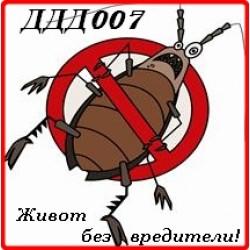 Борба с хлебарки. Пръскане за хлебарки с Attracide DF. Професионална обработка с гел.
